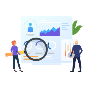 SEO Audit! The Website Search Optimization Audit